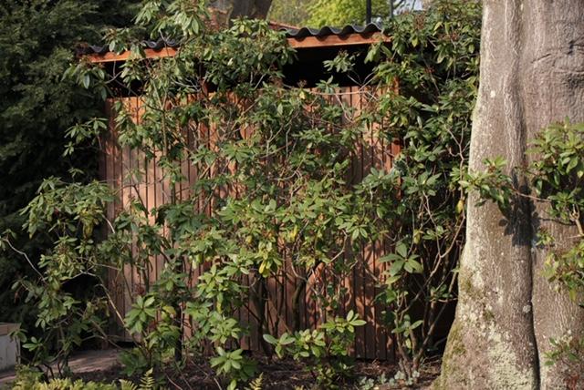 PvRooij-Bouw-en-Advies Hekwerk Opbergruimte tuin Schutting (4)