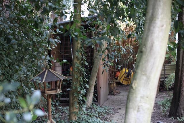 PvRooij-Bouw-en-Advies Hekwerk Opbergruimte tuin Schutting (7)