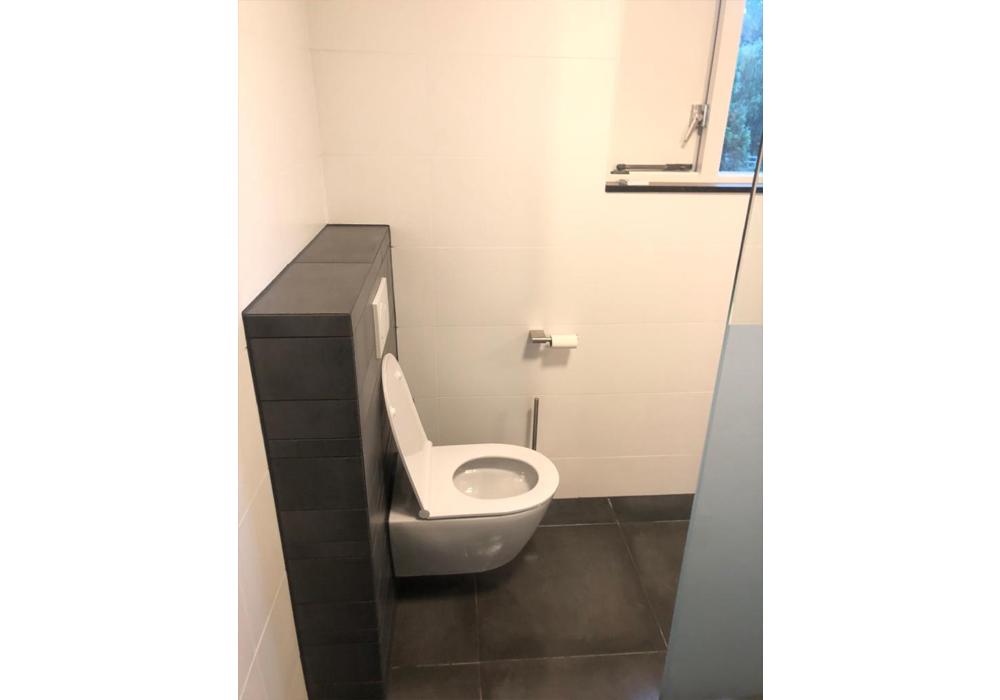 PvRooij-Bouw-en-Advies badkamer-sanitair-toilet-renovatie - maken (6)